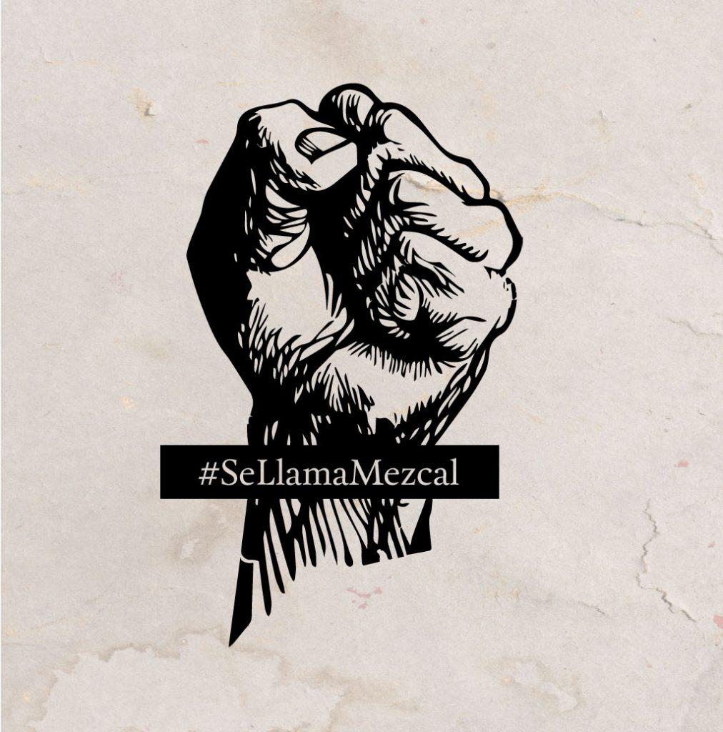 video-institucional-mezcal-NOM199